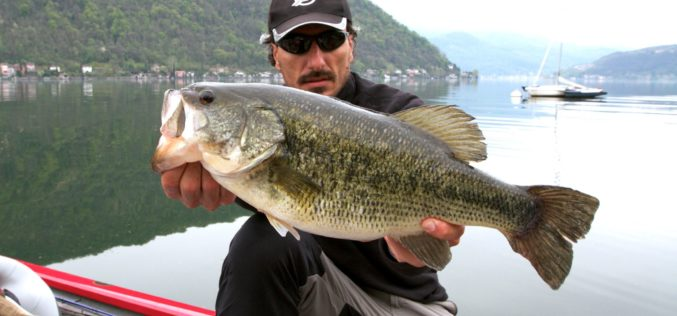 Tony's Power-Italo-Blackbass-Clip