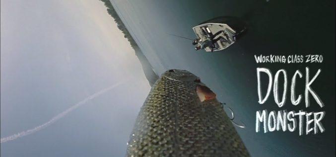 Große Köder – große Fische!