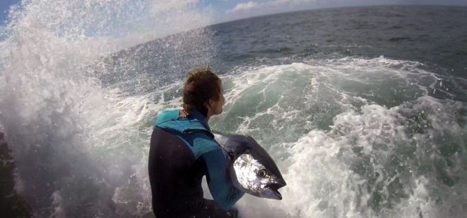 Rockfishing EXTREM