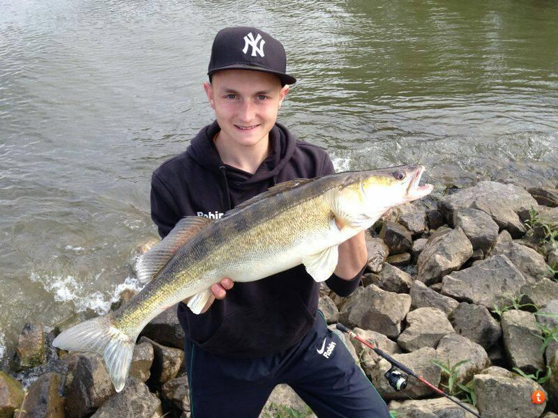 fishingking 74