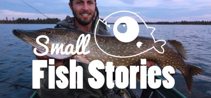 Oberflächen-Fischen auf Schwedenhechte