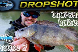 Dropshot Diaries