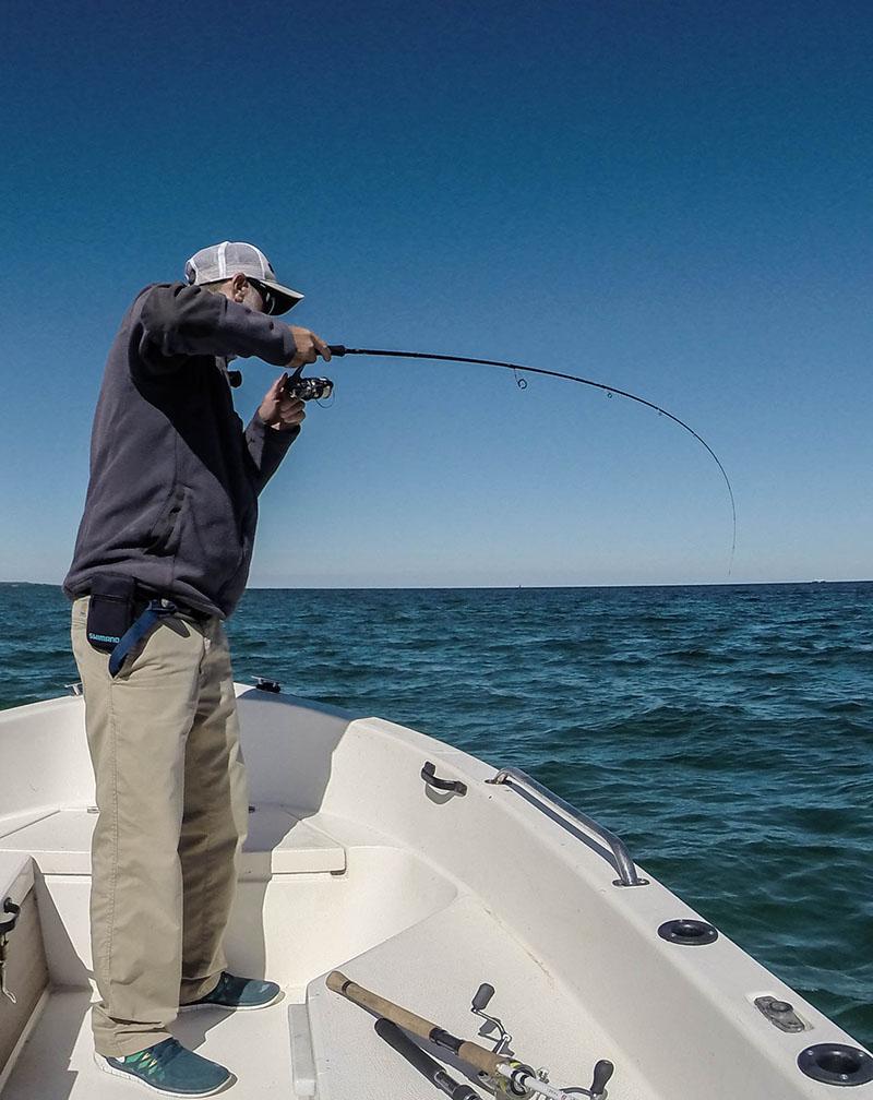 Plattfisch angeln: Platte im Drill