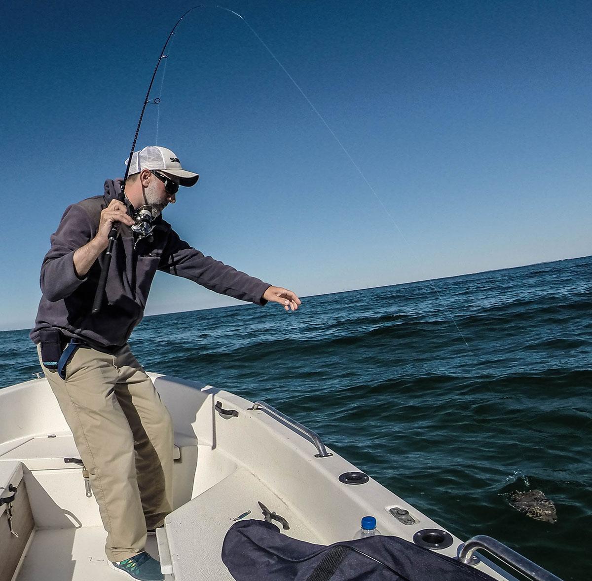 Plattfisch angeln: Auf Texas Rig gefangen