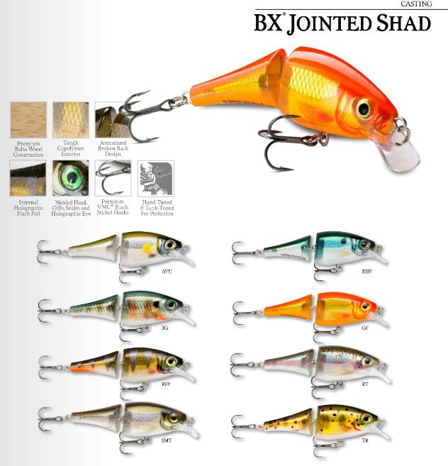 bx-jointed-shad