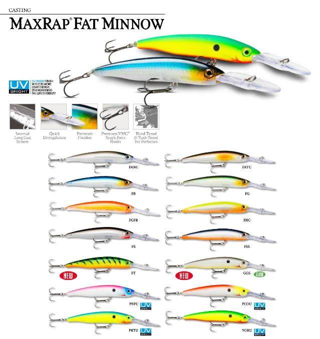 max-rap-fat-minnow