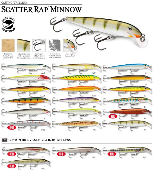 scatter-rap-minnow