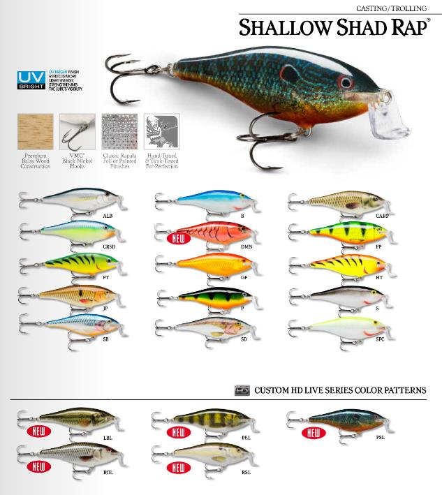 shallow-shad-rap