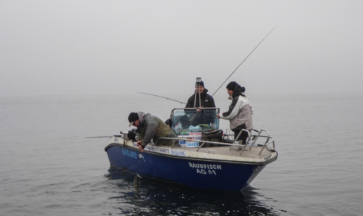 Für die Guides ist jetzt Hochsaison. Alle Boote unterwegs. Und dennoch haben wir nur den Botschi mal getroffen.