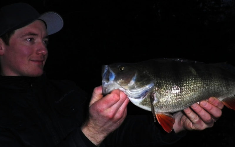 Der frühe Köder fängt den Fisch!