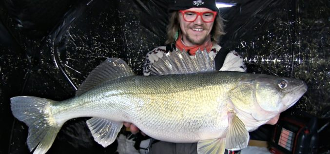 Ice-Walleyes mit den Uncut Anglers