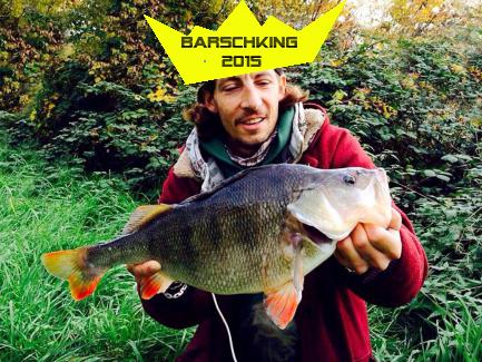 main-stalker-barschking2015