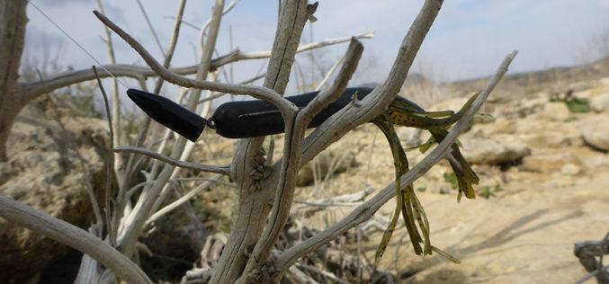 Heavy im Holz: Texas-Tuben-Zander