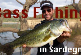 Blackbass auf Sardinien