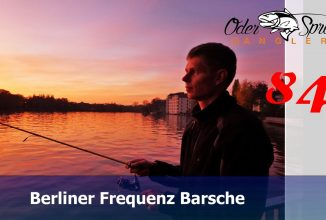 Barsch in Berlin