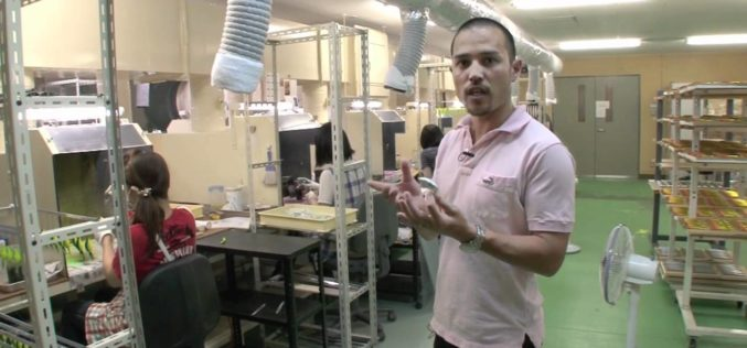 Hardbaitbau – professionell: die Endmontage