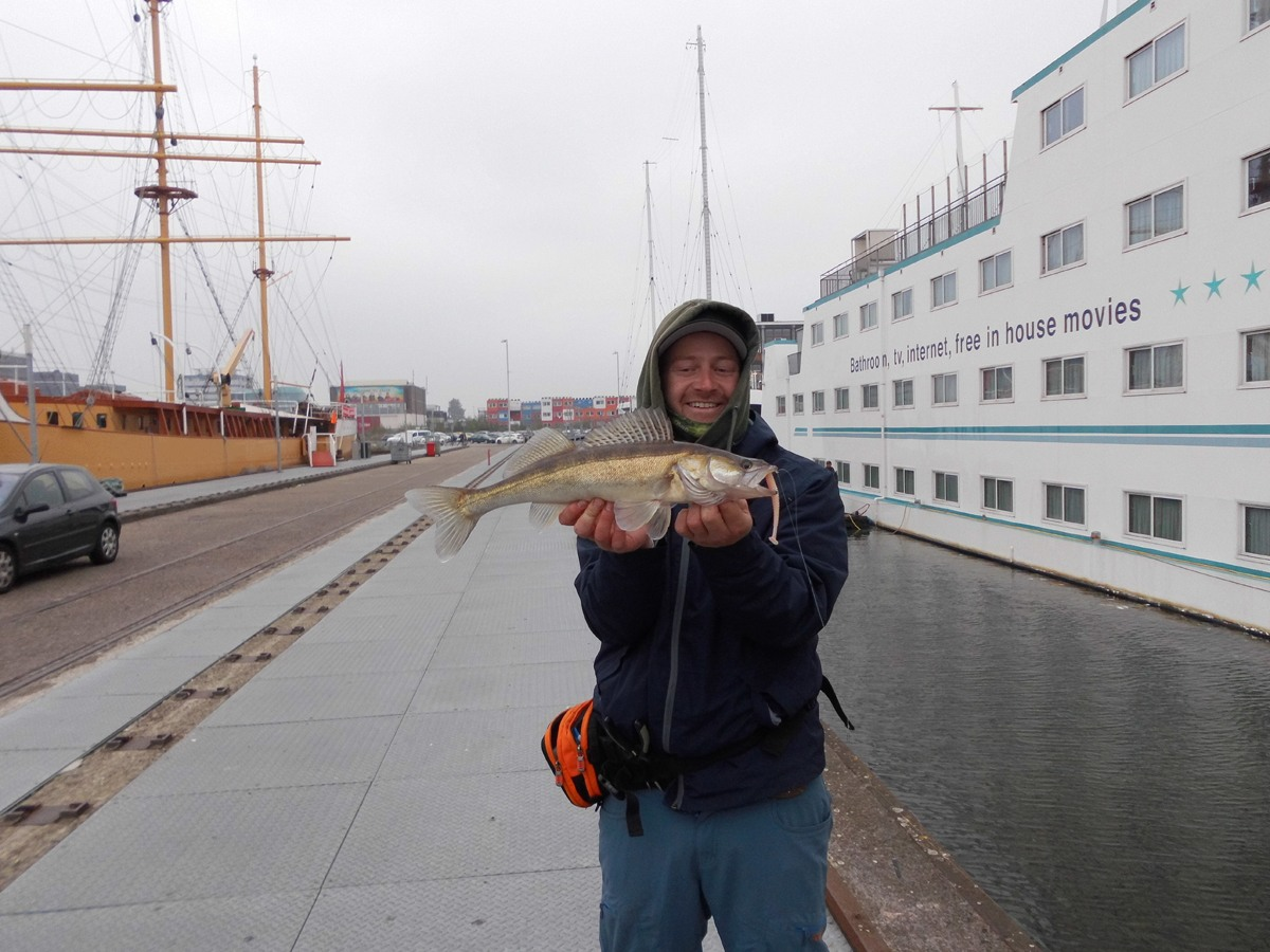 Der Werftpier am Hotelschiff. Ein Klassiker, der erstaunlicherweise trotz massiver Befischung wirklich immer geht.