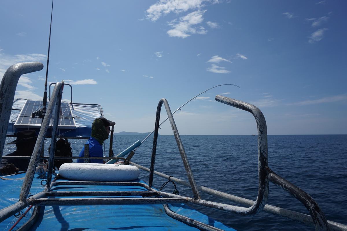 Nach dem ersten Sprung erfolgte die Flucht. Und die hatte es in sich, zumal man Sails ob der Ausstiegsgefahr nicht zu hart drillen sollte.