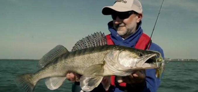 BATV: Viel Wind – viel Fisch!