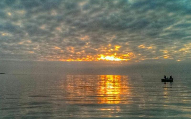 Prognose: Dorsch-Alarm! BA Usertreffen auf der Ostsee.