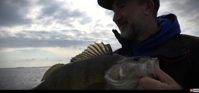 Dietel's Beste: Top-Finesse-Systeme (aus der Fisch&Fang 11/2018)