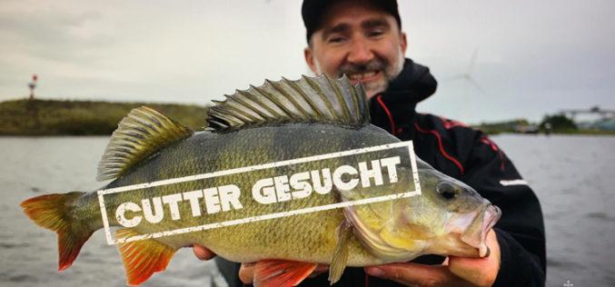Neues BA-Youtube-Projekt: Cutter gesucht!