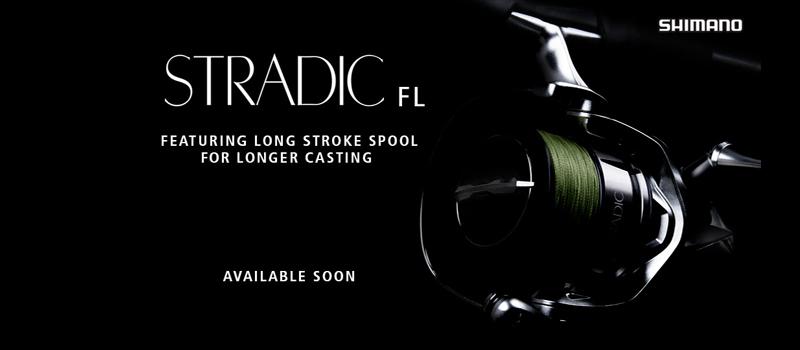 Stradic FL – alle Modelle im Überblick