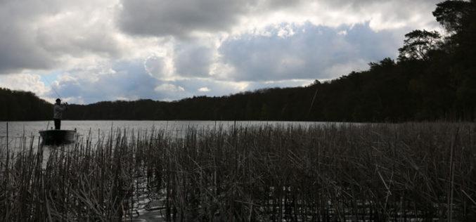 Soft & schnell: Searchbaiten auf Ufer-Vagabunden