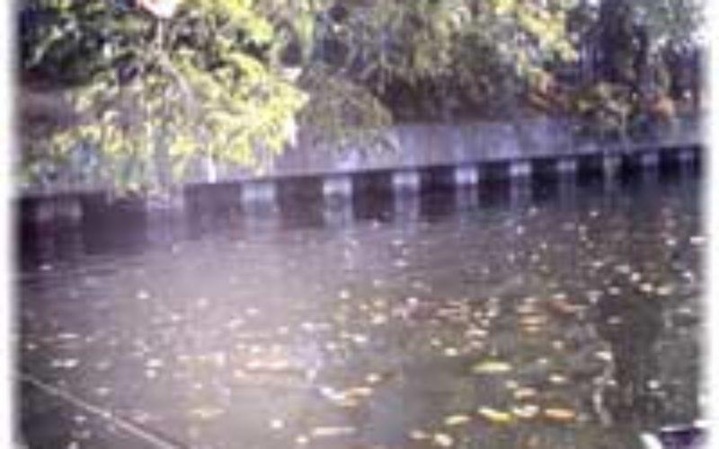Herbstbarsche finden und fangen