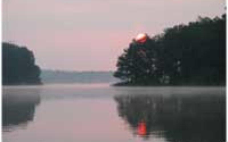 Barsch-Ködertest am Nebelsee