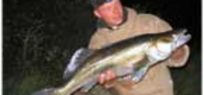 DozeydragoN läutet Raubfisch-Saison ein
