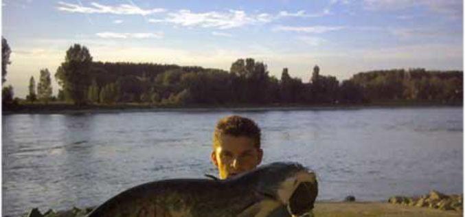 Der Wels- Raubfisch der nächsten Generation ?!