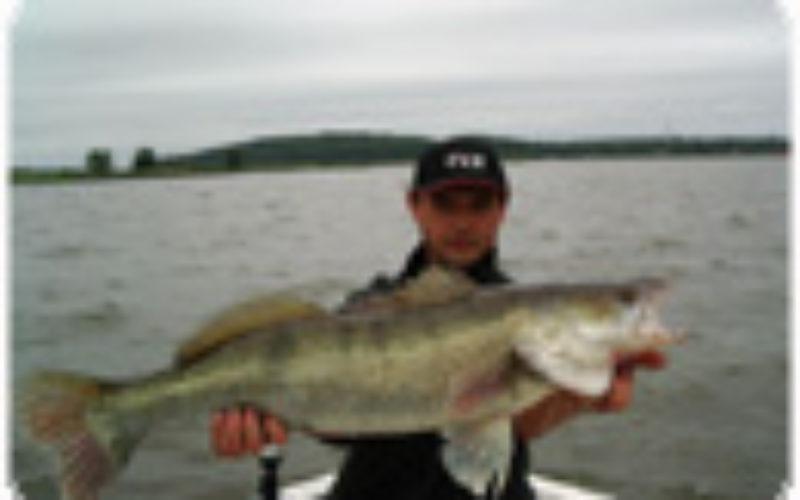 Peenetreffen 07: Mehr Teilnehmer als Fische?