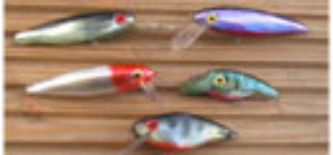 An meinen Fisch lasse ich nur Wasser und CD…