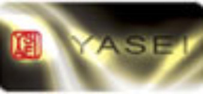"""Das Shimano """"Yasei""""- Konzept"""