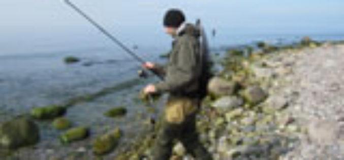 Meerforellen-Tutorial für Küsten-Rookies