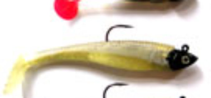 How to bastel the perfect Swimbait for Barsche
