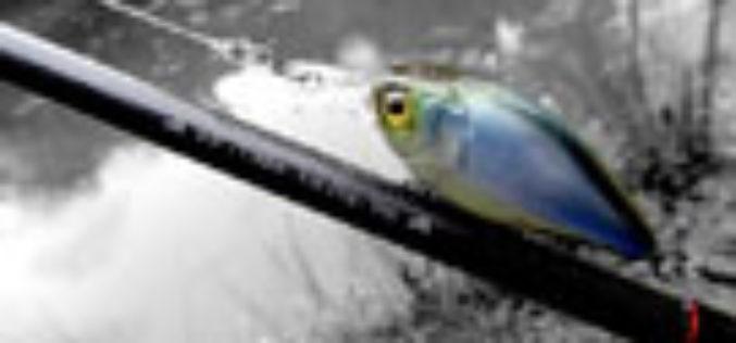 Leicht, schnell, kurz & geil – Greys Prowla Specialist Pro