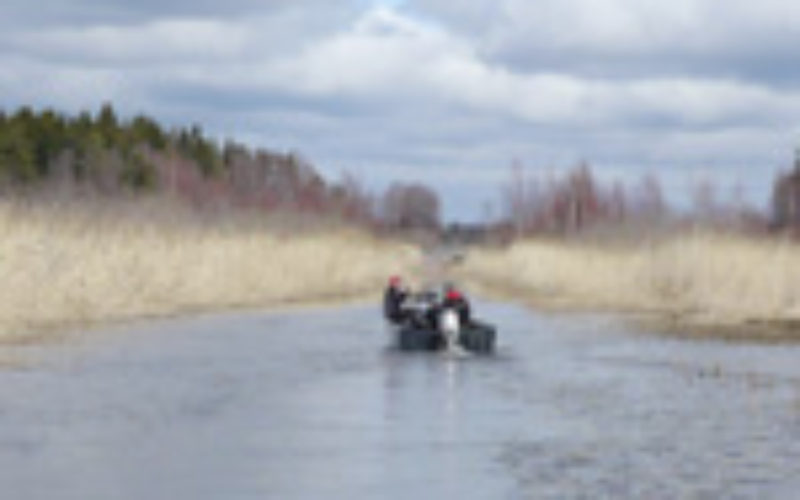 Mein erstes Mal in Schweden: Sportfishing in Dalsland