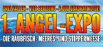 angelexpo_open