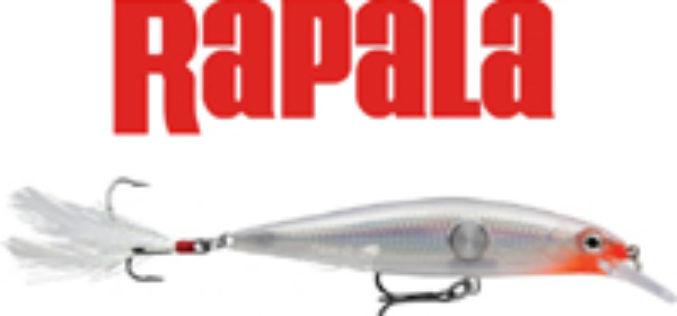 Rapala Clackin' Minnow – Tiefton-Suspender für die obere Wasserschicht