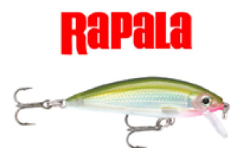 Rapala X-Rap Countdown – Gumpen- und Wassersäulen-Scanner